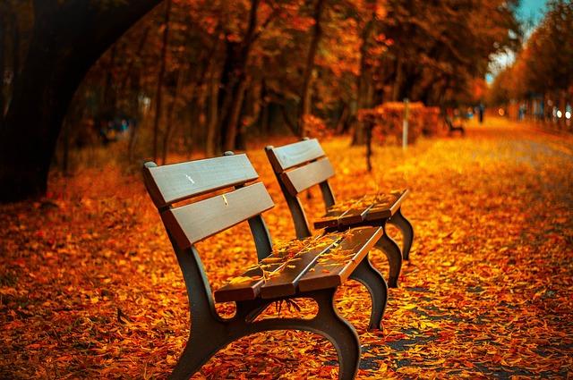 lavice na podzim